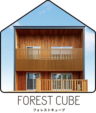 FOREST CUBE